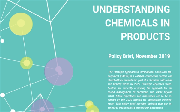 Understanding Chemicals in Products - Policy Brief