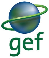 Global best practices - A GEF6 project in preparation phase